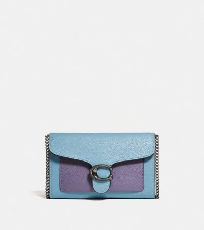 Fashion 4 - Tabby Chain Clutch In Colorblock